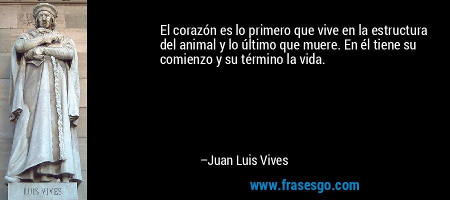 El corazón es lo primero que vive en la estructura del animal y lo último que muere. En él tiene su comienzo y su término la vida. – Juan Luis Vives