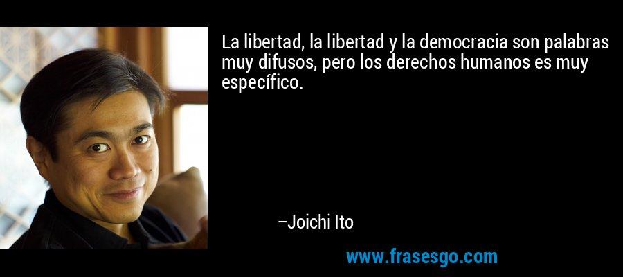 La libertad, la libertad y la democracia son palabras muy difusos, pero los derechos humanos es muy específico. – Joichi Ito