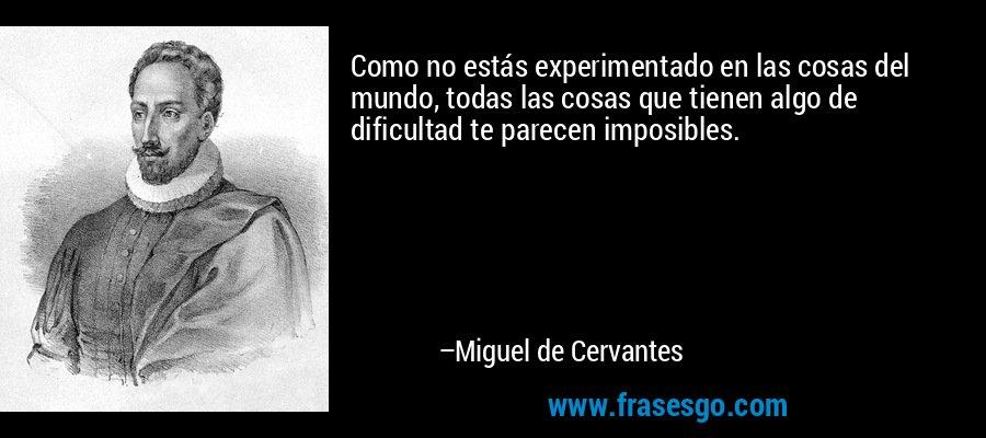 Como no estás experimentado en las cosas del mundo, todas las cosas que tienen algo de dificultad te parecen imposibles. – Miguel de Cervantes