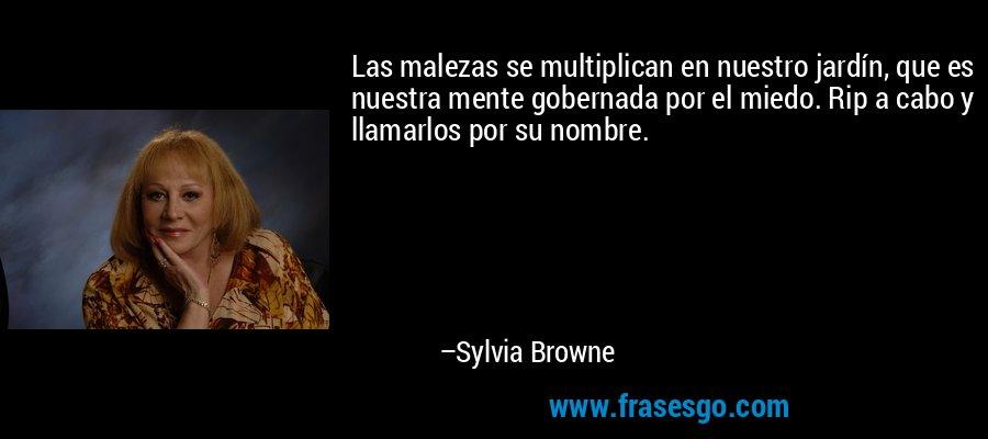 Las malezas se multiplican en nuestro jardín, que es nuestra mente gobernada por el miedo. Rip a cabo y llamarlos por su nombre. – Sylvia Browne